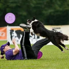 200907-frisbee-usti-36131.jpg